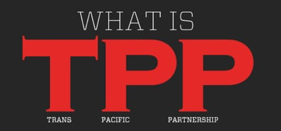 what_is_tpp